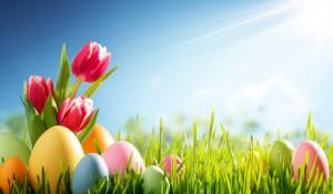 Frühlingswiese OsternHintergrund